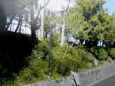 斜面 003-1.jpg