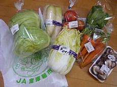 西谷野菜 018-1.jpg