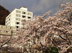 2012-04-11 志んぐ荘写真-1.jpg