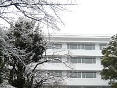 23.2.11雪景色 013-1.jpg