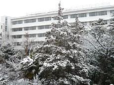 23.2.11雪景色 031-1.jpg