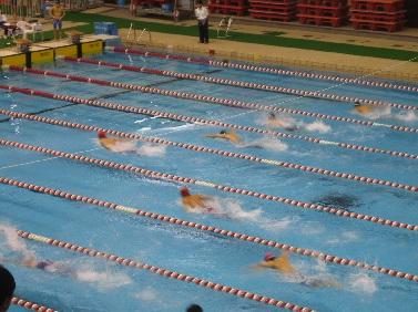 高校水泳部2.jpg