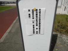 P1000671.jpg
