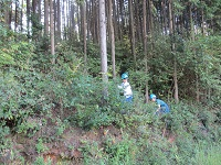 sasayama201503.jpg