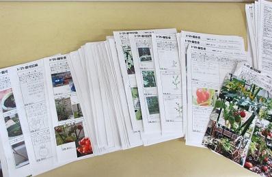 tomatohoukokusyo1.jpg