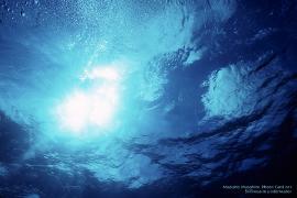 海低からの空.jpg