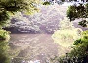 sanshiro.jpg