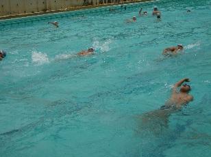 背泳.jpg