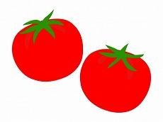 vegetable_tomato_9763-450x337.jpg