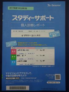 DSC00981.jpg