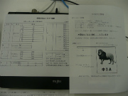 P1050834.jpg
