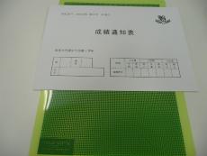 P1060366.jpg