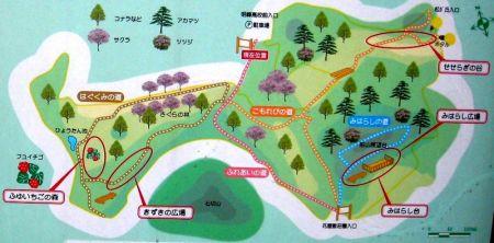 kizuki180317.jpg